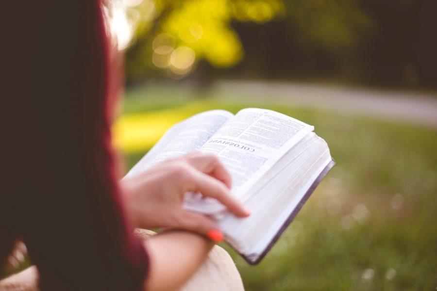 Já a moji muži – Úsměvné čtení pro pobavení i zamyšlení!